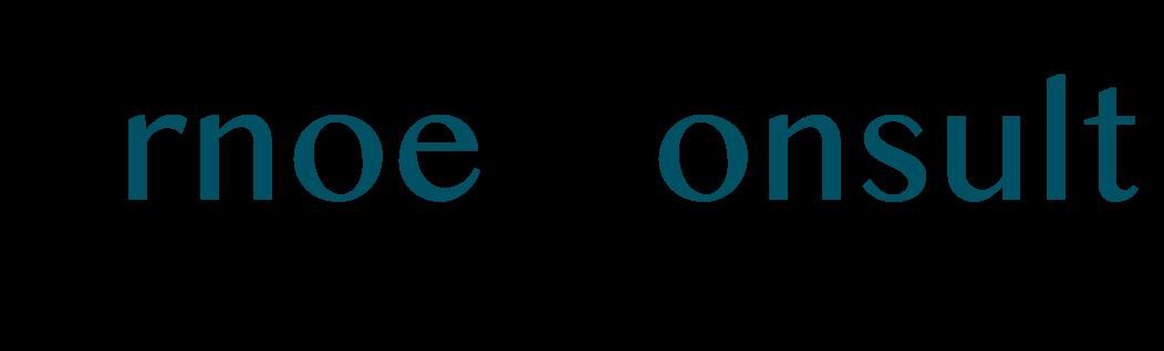 Arnoe Consult – Advisory Services